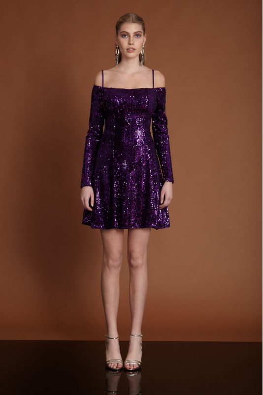 Purple velvet long sleeve mini dress